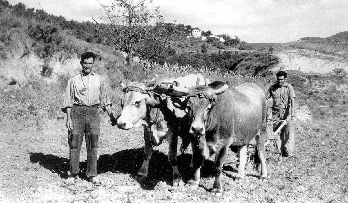 Can Bundancia l'any 1935