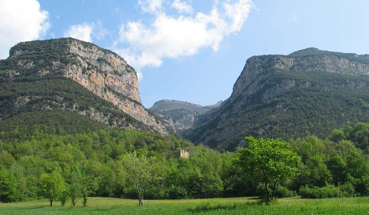 Vall del Torrent del Toll